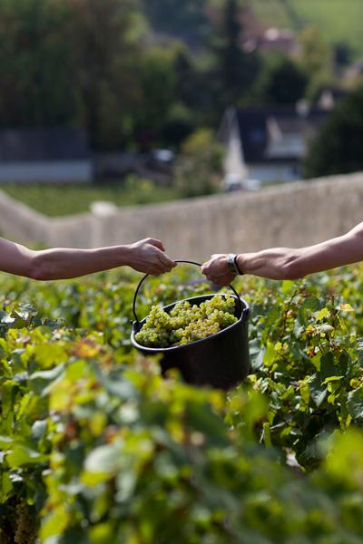 Gite pour 10 personnes Arcenant Bourgogne escalade randonnées GR7 Armelle photographe
